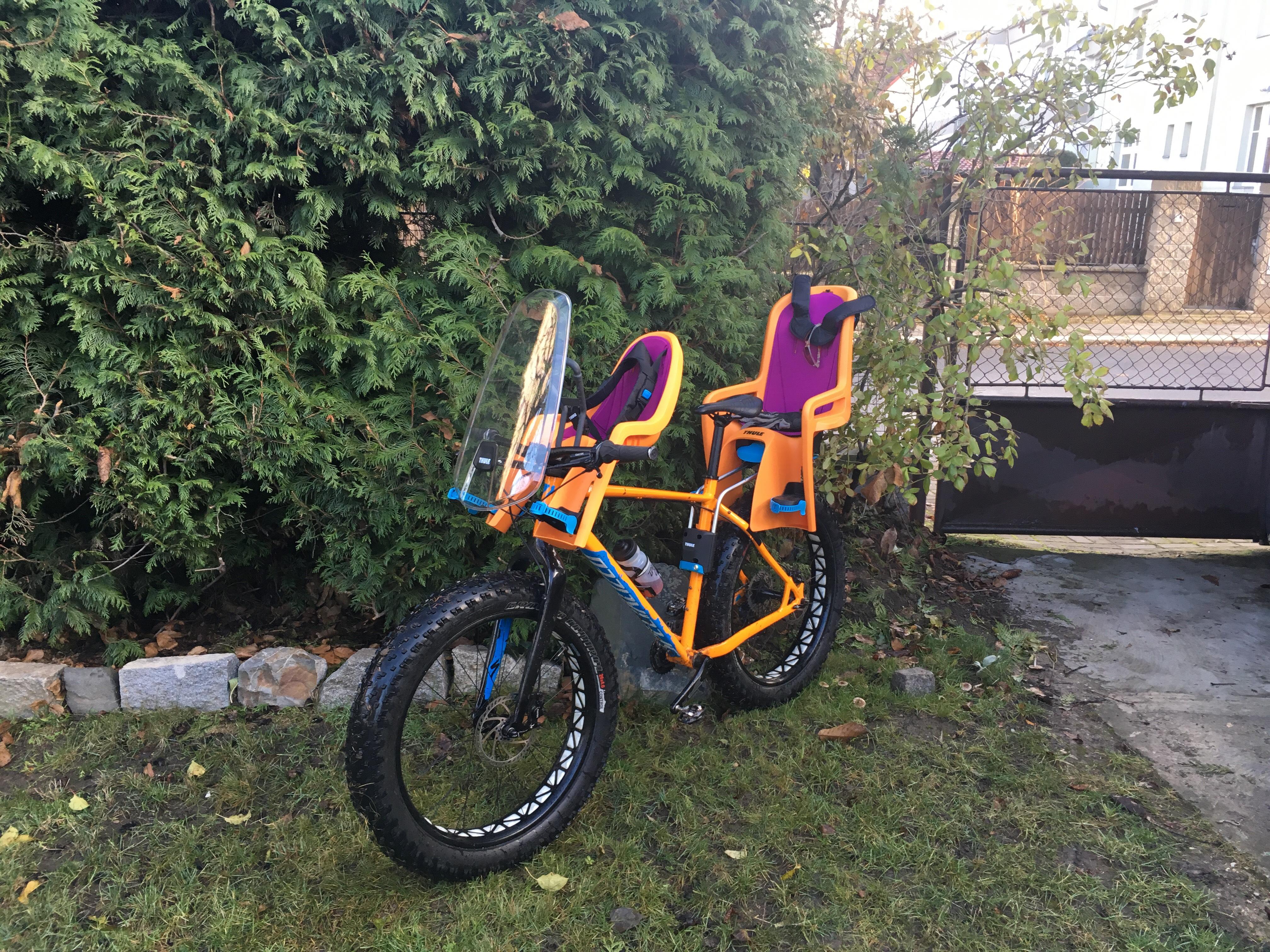 Thule RideAlong Mini Child Bike Seat Padding